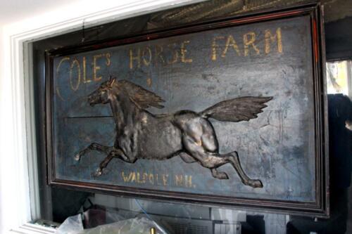 coles horse farm1