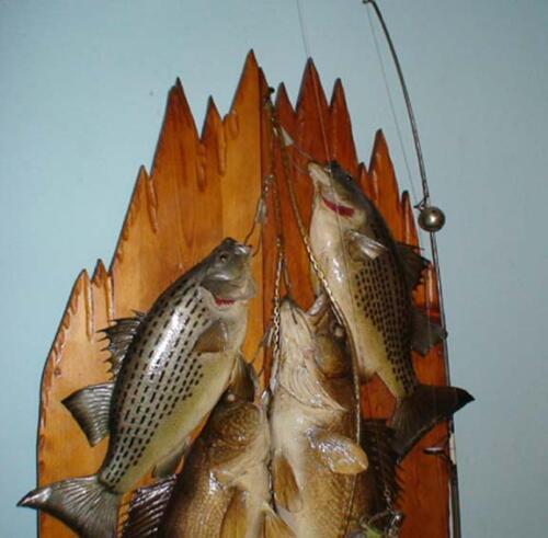 fishmount1