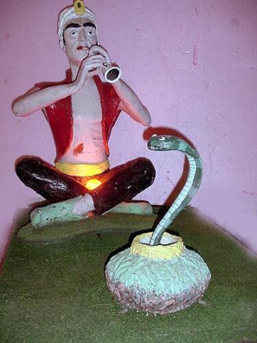 snakecharmer3